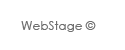 Web Stage